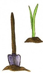 shovel and tomato sprout