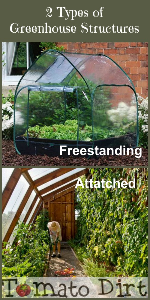 2 types of greenhouse structures with Tomato Dirt
