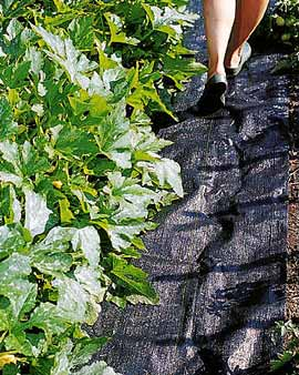Pro-Weed Mat, a woven weed barrier with Tomato Dirt