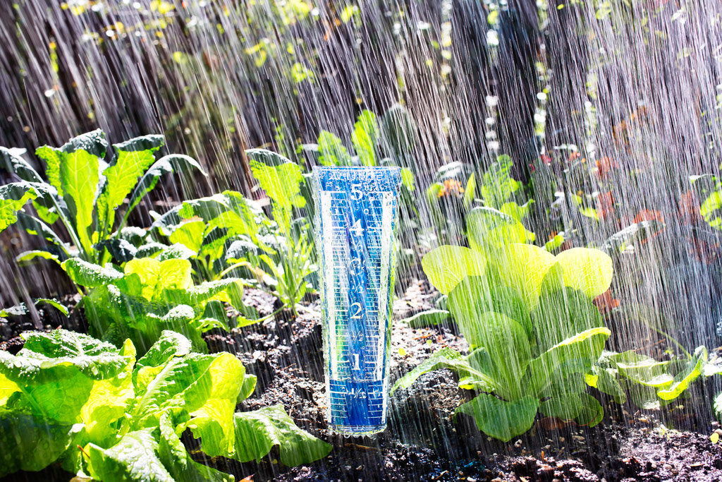 Rain Gauge by Bonnie Plants with Tomato Dirt