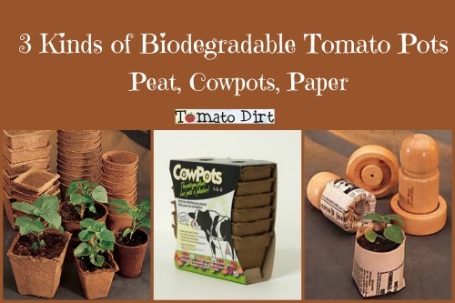 3 kinds of biodegradable tomato pots with Tomato Dirt