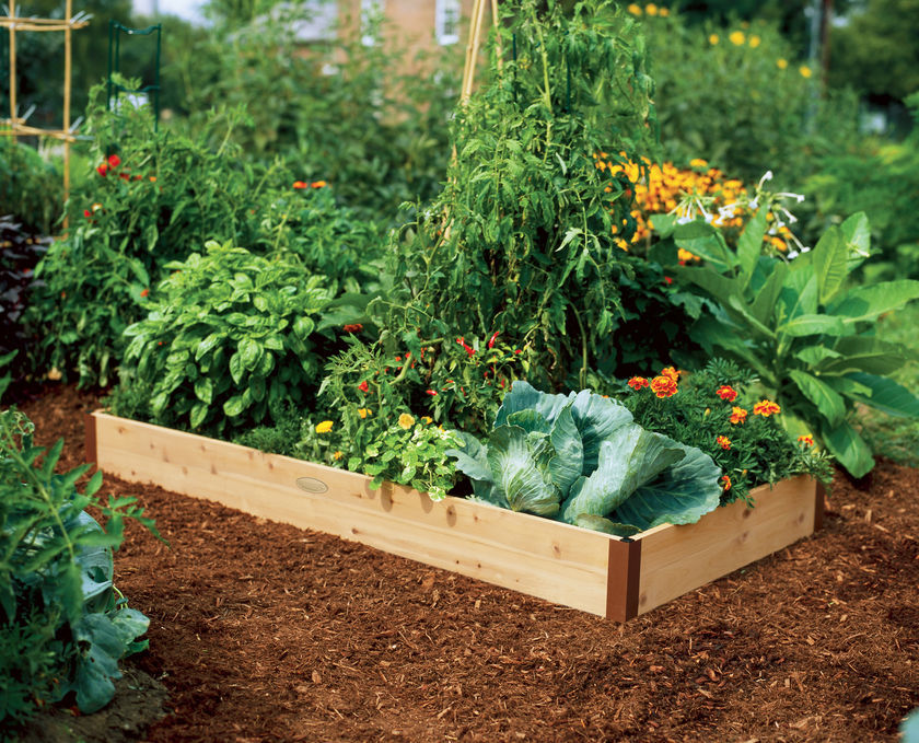 Starting a raised bed vegetable garden FAQs with Tomato Dirt