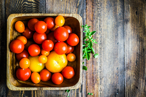 Tomato nutrition with Tomato Dirt