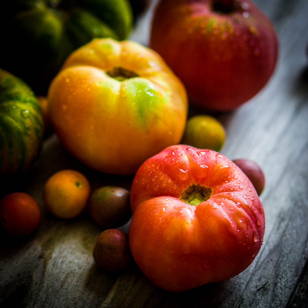 Hybrid and heirloom tomatoes with Tomato Dirt
