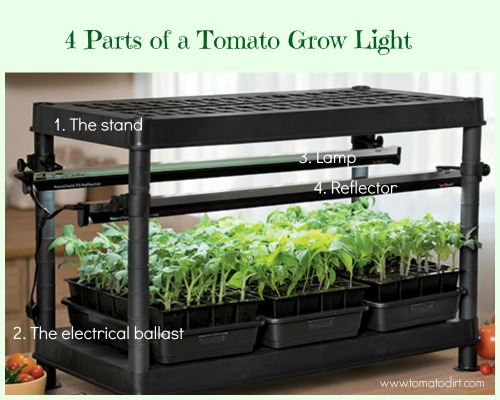 Tomato grow lights explained for indoor gardening, seed starting