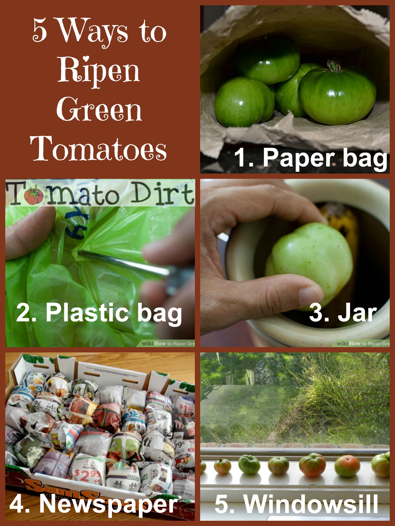 5 ways to ripen green tomatoes with Tomato Dirt