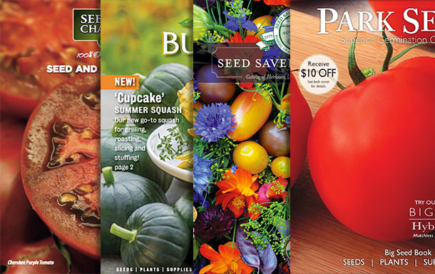Seed catalogs courtesy of The Garden Glove via Tomato Dirt