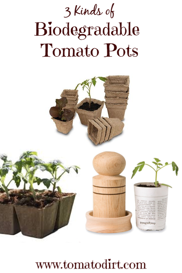 Go green! 3 kinds of biodegradable seed starting pots with Tomato Dirt #GrowingTomatoes #HomeGardening