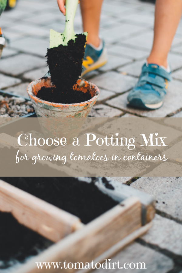 How to choose a potting mix for growing tomatoes in pots or containers with Tomato Dirt #GardeningTips #HomeGardening