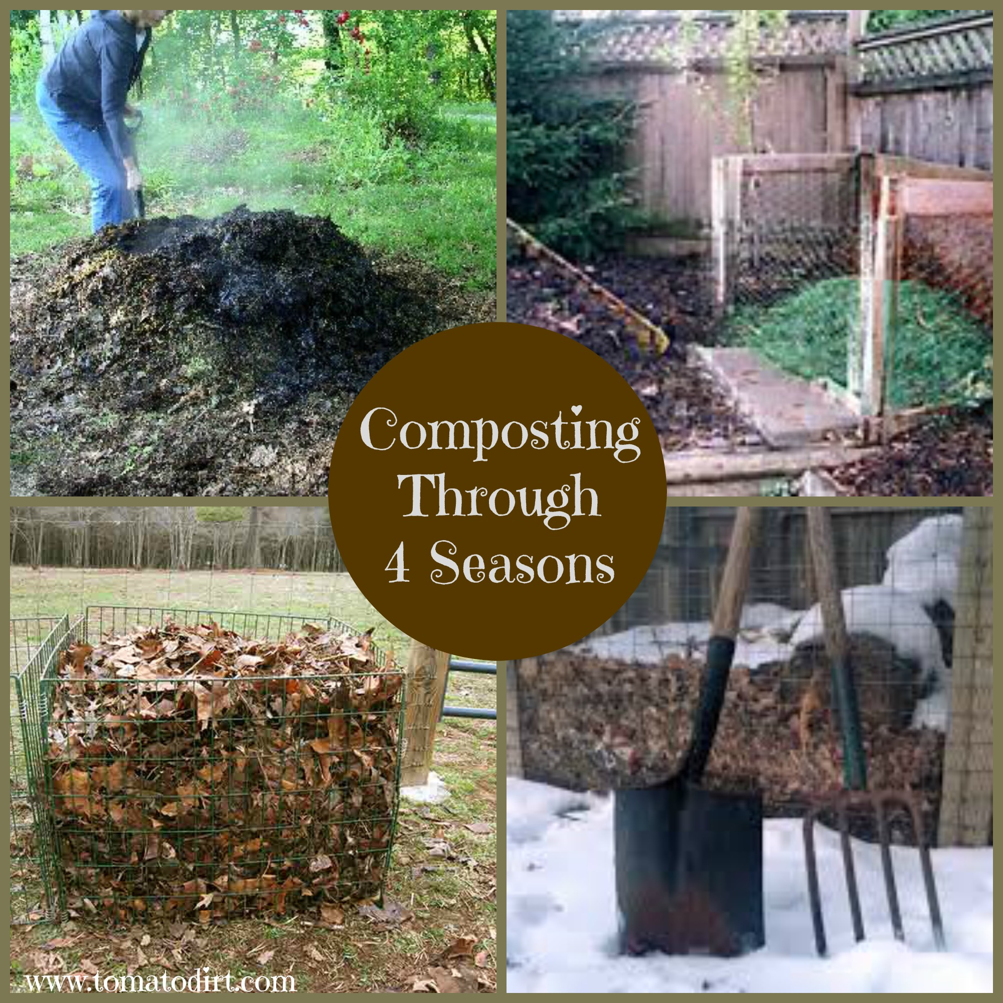 Composting through 4 seasons with Tomato Dirt