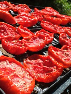 Dried tomatoes from Gardening Know How via Tomato Dirt
