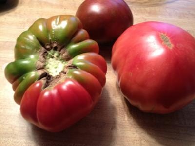 First picking of our Heirloom and Black tomatoes