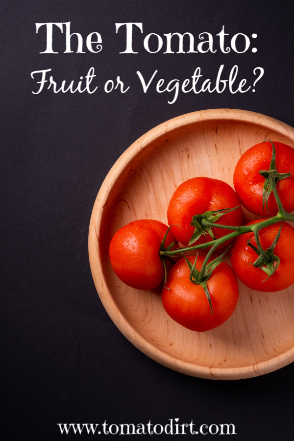 The Tomato: is it a fruit or vegetable? With Tomato Dirt