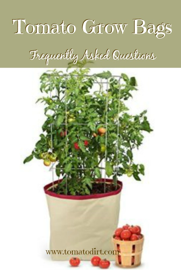 Tomato Grow Bags: frequently asked questions about these new and unique containers for growing tomatoes with Tomato Dirt. #TomatoGrowingTips #GrowingTomatoesinPots