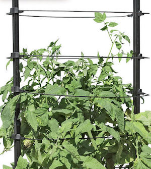 Tomato Cages and Supports at Gardeners Supply via Tomato Dirt