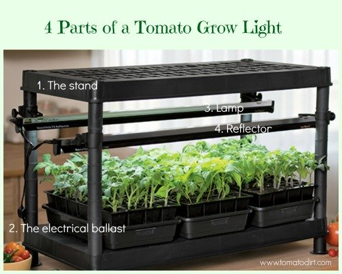 4 parts of a tomato grow light with Tomato Dirt