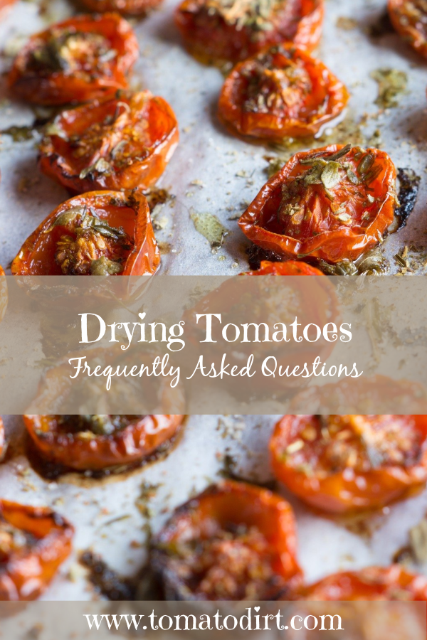 Drying tomatoes: FAQs with Tomato Dirt #HomeGardening #GrowingTomatoes