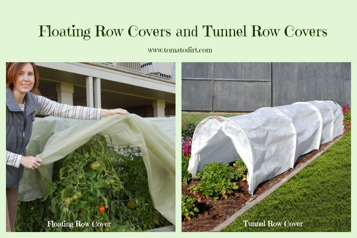 Floating row covers and tunnel row covers with Tomato Dirt