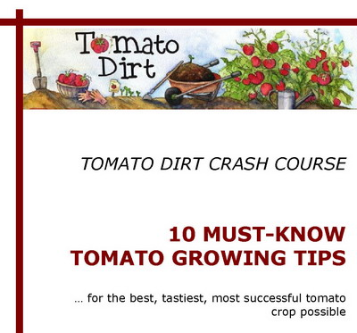 Tomato Dirt Crash Course: free report!