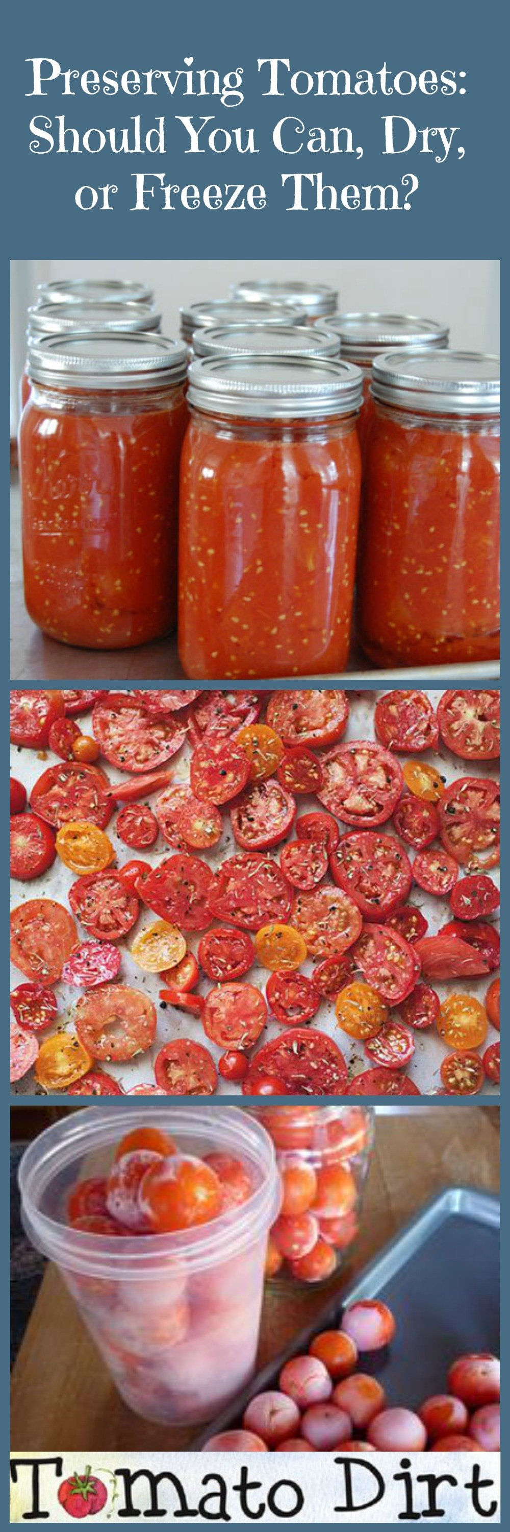 Preserving Tomatoes: should I can, dry, or freeze them? Benefits and drawbacks of each with Tomato Dirt.