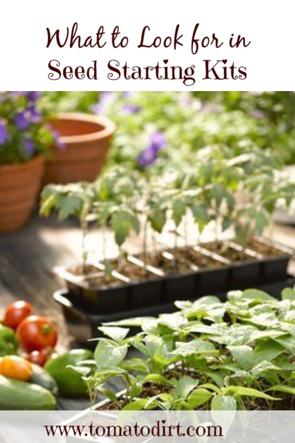 What to look for in seed starting kits for #GrowingTomatoes, vegetables, flowers with Tomato Dirt #HomeGardening #GardeningTips